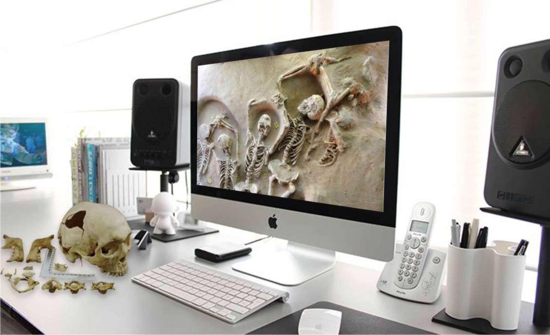 FSP 505 : Forensics Anthropology